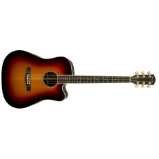 Fender  USA  Custom  Shop  Pro  TPD-2CE  All  Solid  Dreadnought  Acoustic