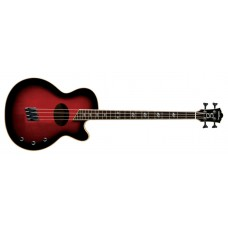 Washburn AB40 Stu Hamm Acoustic Electric Bass Guitar - B Stock