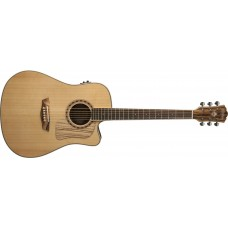 Washburn  WCSD32SCEK  Solid  Spruce  Top  Zebrawood  Back  Sides  with  Gig
