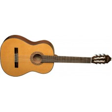Washburn C40 Acoustic Classical Nylon String Guitar