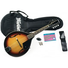Washburn  M1K  Mandolin  Kit