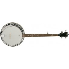 Washburn B11K 5 String Banjo with Steel Tone Ring with Washburn Hardcase