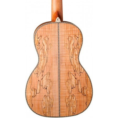Open Box - Washburn R360SMK-R Parlor Biscuit Resonator Spalted maple top