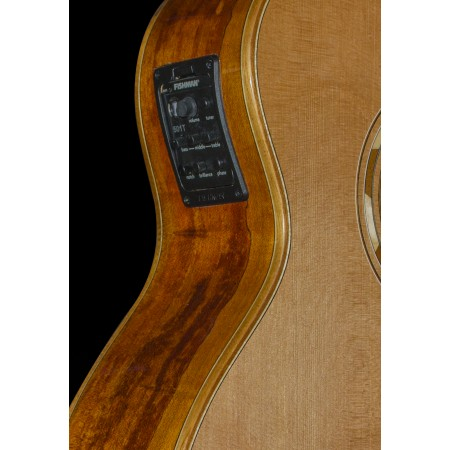 Washburn WLG66SCE Woodline Solid Cedar Top Acoustic Electric Guitar